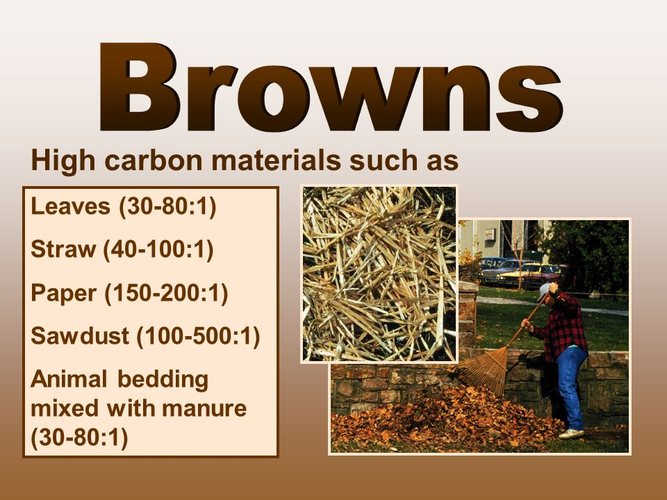 Leaves (30-80:1) Straw (40-100:1) Paper (150-200:1) Sawdust (100-500:1) Animal bedding mixed with manure (30-80:1) High carbon materials such as