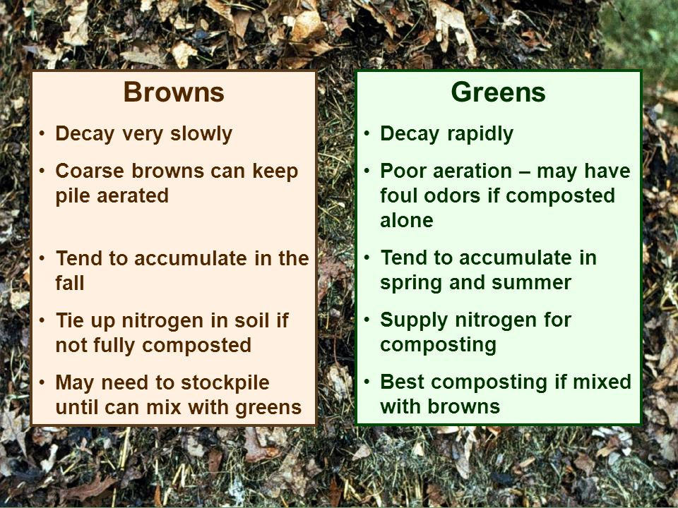 Browns Decay very slowly Coarse browns can keep pile aerated Tend to accumulate in the fall Tie up nitrogen in soil if not fully composted May need to