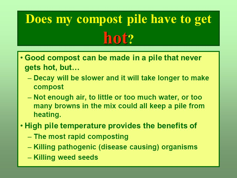 hot Does my compost pile have to get hot ? Good compost can be made in a pile that never gets hot, but… –Decay will be slower and it will take longer