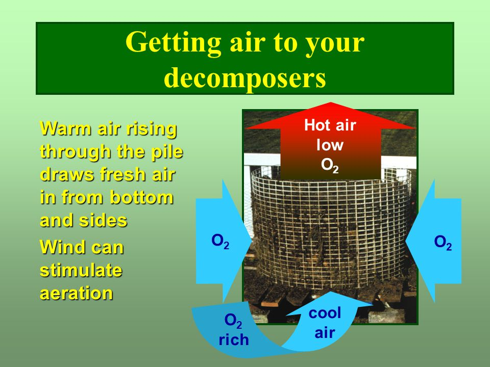 Getting air to your decomposers Hot air low O 2 O2O2 cool air O 2 rich O2O2 Warm air rising through the pile draws fresh air in from bottom and sides