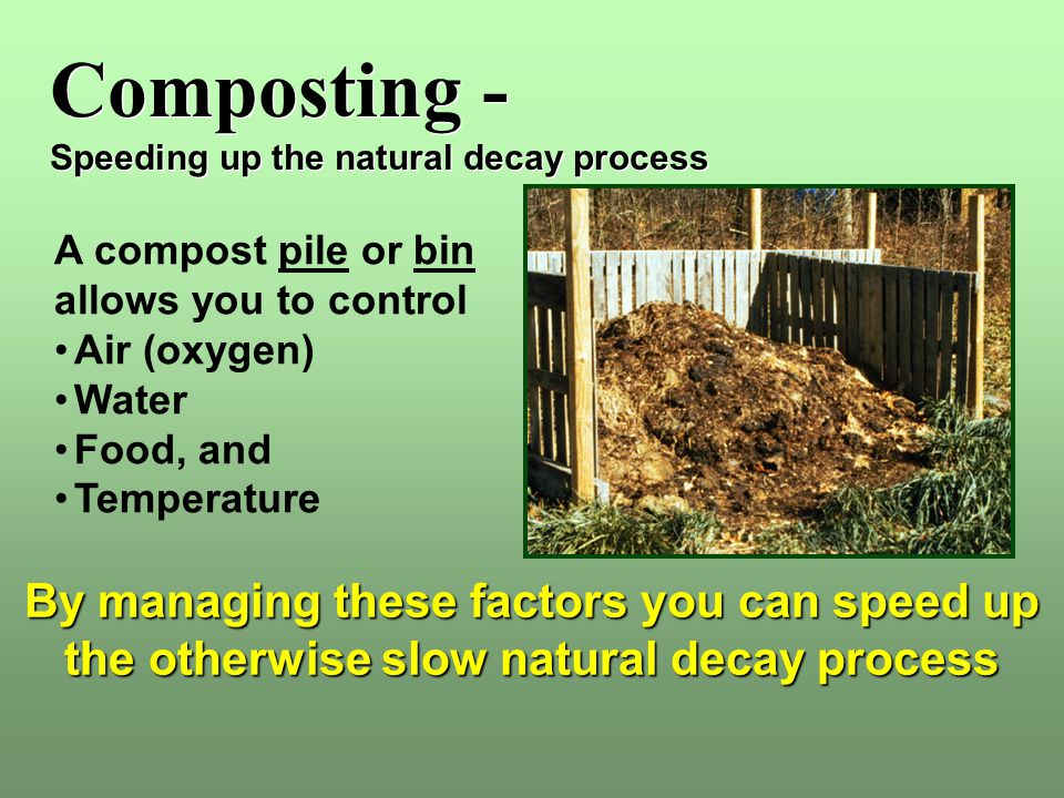 Composting - Speeding up the natural decay process Composting - Speeding up the natural decay process A compost pile or bin allows you to control Air