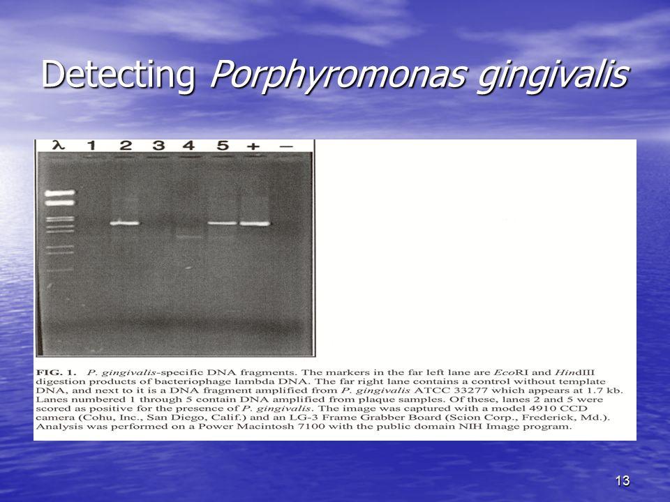 13 Detecting Porphyromonas gingivalis