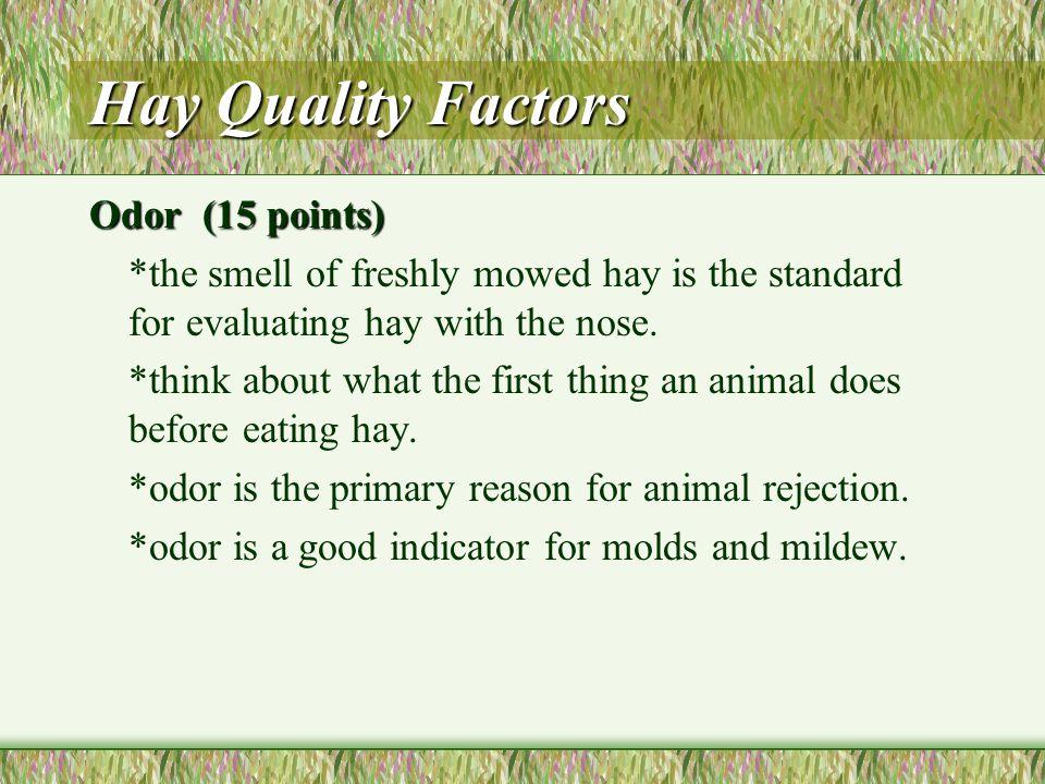 Hay Quality Factors Color (con't)Color (con't) *rain damaged hay tends to make hay dark brown or black, stems will often become very brittle. *heat da