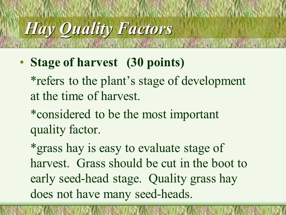 Using a Point System to Evaluate Hay Hay quality factors can be assigned a weighed number of points based on their importance to the overall quality.