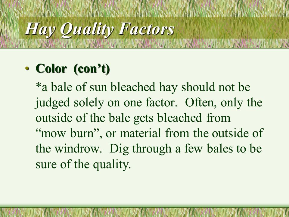 Hay Quality Factors Color (15 points)Color (15 points) *the most desirable hay is bright, natural green.