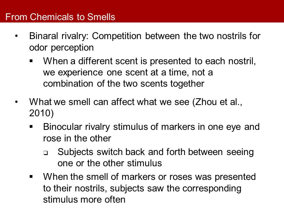 From Chemicals to Smells Binaral rivalry: Competition between the two nostrils for odor perception  When a different scent is presented to each nostr