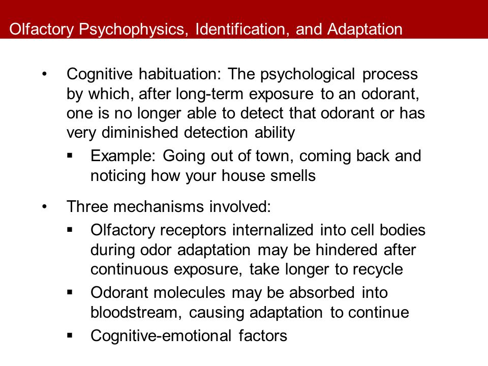 Olfactory Psychophysics, Identification, and Adaptation Cognitive habituation: The psychological process by which, after long-term exposure to an odor