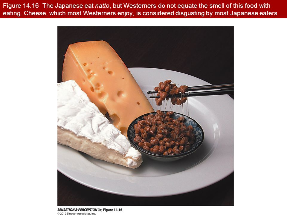 Figure 14.16 The Japanese eat natto, but Westerners do not equate the smell of this food with eating. Cheese, which most Westerners enjoy, is consider