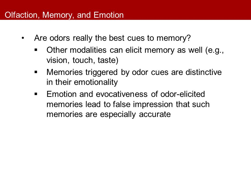 Olfaction, Memory, and Emotion Are odors really the best cues to memory?  Other modalities can elicit memory as well (e.g., vision, touch, taste)  M
