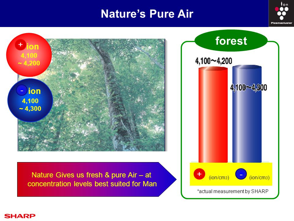 Nature's Pure Air : A Closer Look Higher Ion Concentration Higher Ion Concentration :  Forest/park Ion concentration is >4100ions/cm³  City outdoors (Road / Plaza / Square) Ion concentration is < 900 ions / cm³ Air at Forest or a Park is Good .