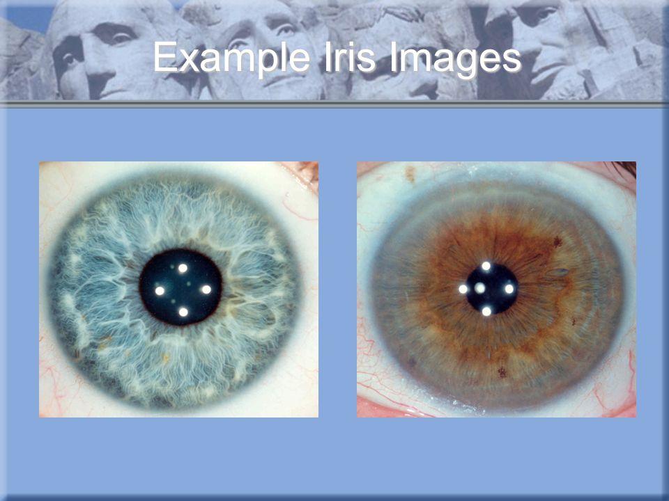 Example Iris Images