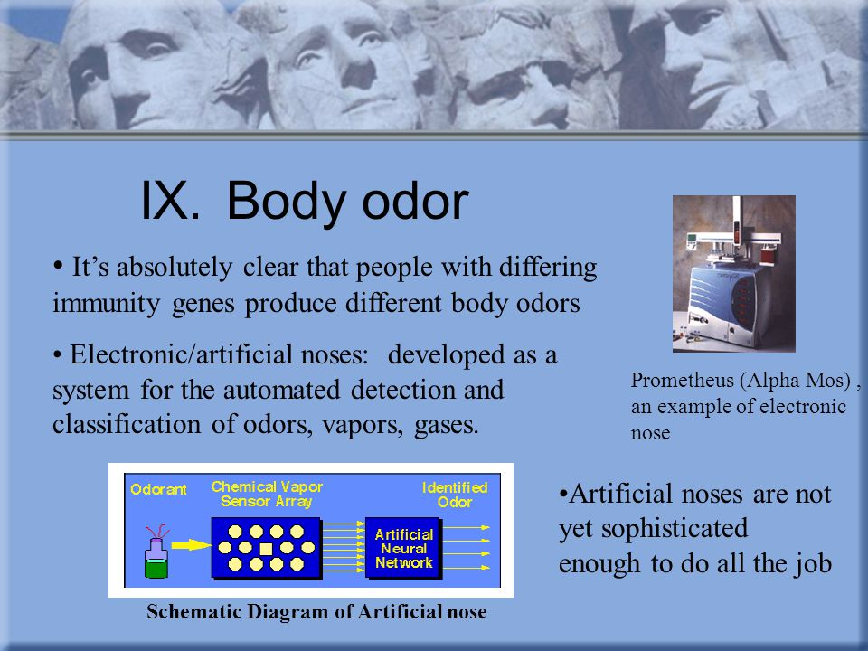 IX.Body odor It's absolutely clear that people with differing immunity genes produce different body odors Electronic/artificial noses: developed as a