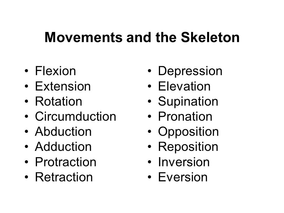 Movements and the Skeleton Flexion Extension Rotation Circumduction Abduction Adduction Protraction Retraction Depression Elevation Supination Pronation Opposition Reposition Inversion Eversion