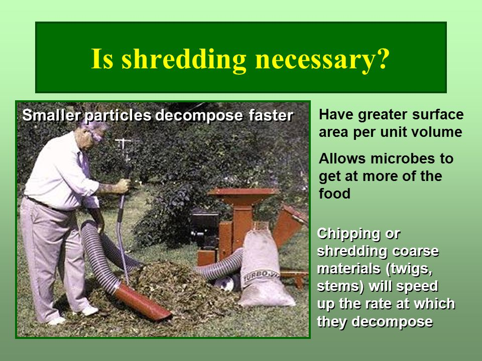 Is shredding necessary? Have greater surface area per unit volume Allows microbes to get at more of the food Smaller particles decompose faster Chippi