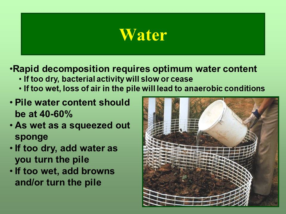 Water Pile water content should be at 40-60% As wet as a squeezed out sponge If too dry, add water as you turn the pile If too wet, add browns and/or