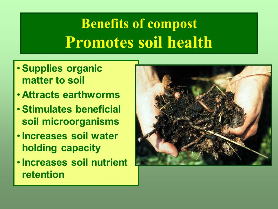 Benefits of compost Promotes soil health Supplies organic matter to soil Attracts earthworms Stimulates beneficial soil microorganisms Increases soil