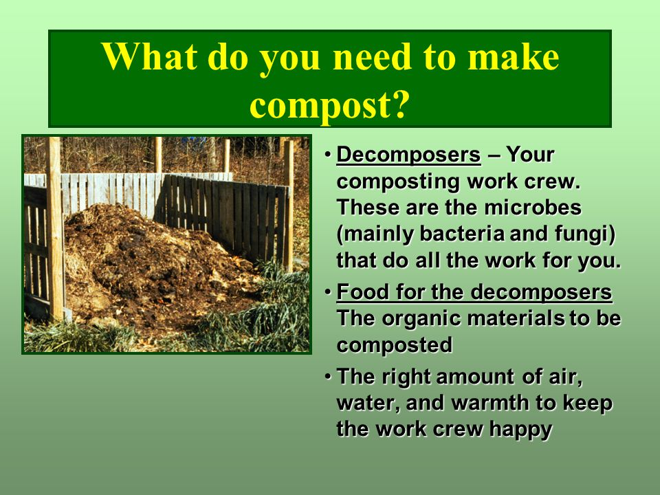 What do you need to make compost? Decomposers – Your composting work crew. These are the microbes (mainly bacteria and fungi) that do all the work for