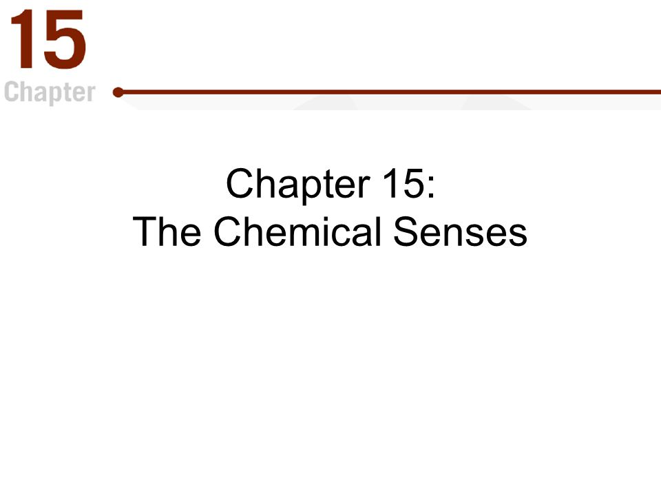 Chapter 15: The Chemical Senses