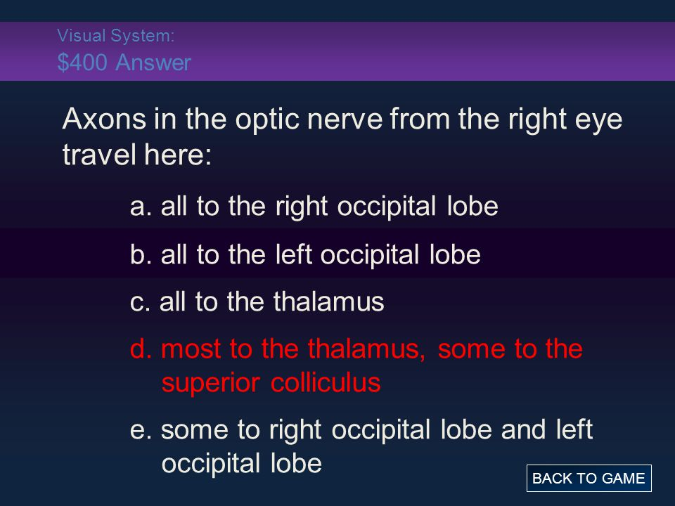 Visual System: $400 Answer Axons in the optic nerve from the right eye travel here: a.