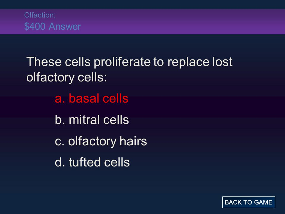Olfaction: $400 Answer These cells proliferate to replace lost olfactory cells: a. basal cells b. mitral cells c. olfactory hairs d. tufted cells BACK