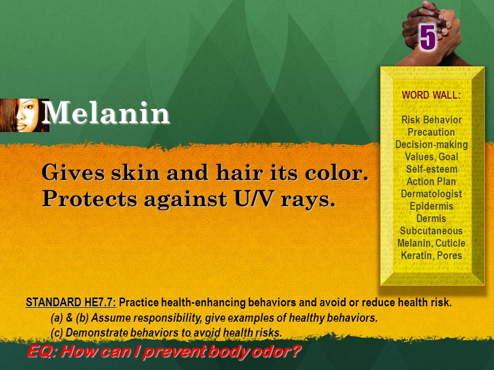 Melanin WORD WALL: Risk Behavior Precaution Decision-making Values, Goal Self-esteem Action Plan Dermatologist Epidermis Dermis Subcutaneous Melanin, Cuticle Keratin, Pores Gives skin and hair its color.