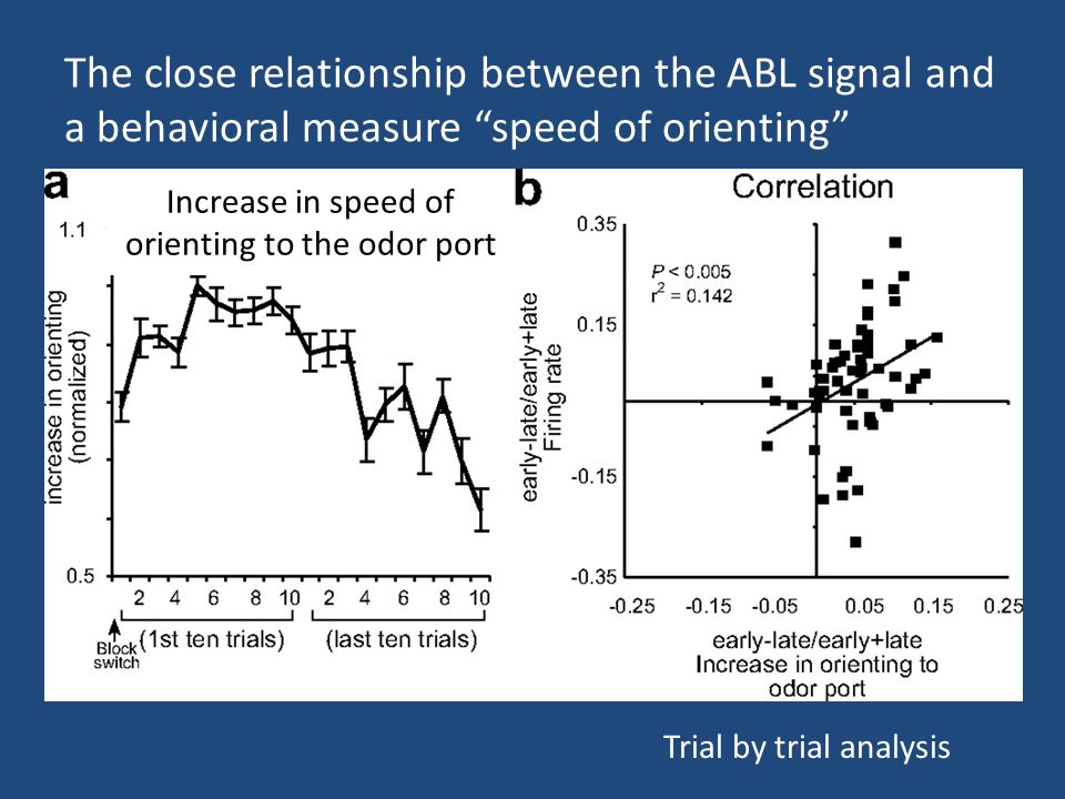 Increase in speed of orienting to the odor port Trial by trial analysis The close relationship between the ABL signal and a behavioral measure speed of orienting