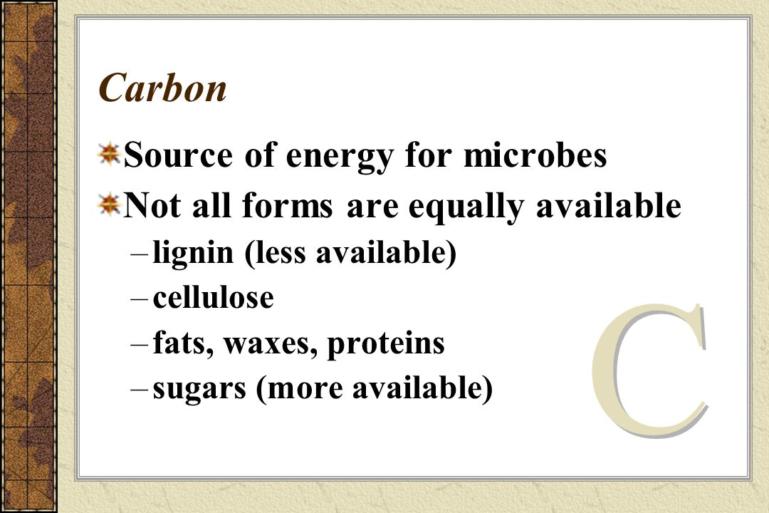 Carbon Source of energy for microbes Not all forms are equally available –lignin (less available) –cellulose –fats, waxes, proteins –sugars (more available)