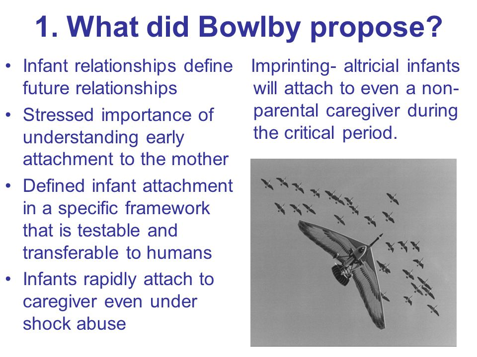 1. What did Bowlby propose.