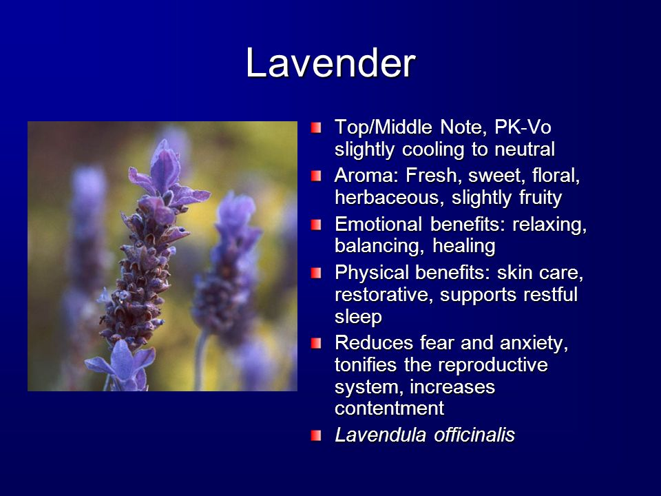 Lavender Top/Middle Note, slightly cooling to neutral Top/Middle Note, PK-Vo slightly cooling to neutral Aroma: Fresh, sweet, floral, herbaceous, slightly fruity Emotional benefits: relaxing, balancing, healing Physical benefits: skin care, restorative, supports restful sleep Reduces fear and anxiety, tonifies the reproductive system, increases contentment Lavendula officinalis