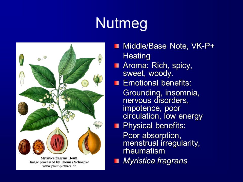 Nutmeg Middle/Base Note, VK-P+ Heating Aroma: Rich, spicy, sweet, woody.