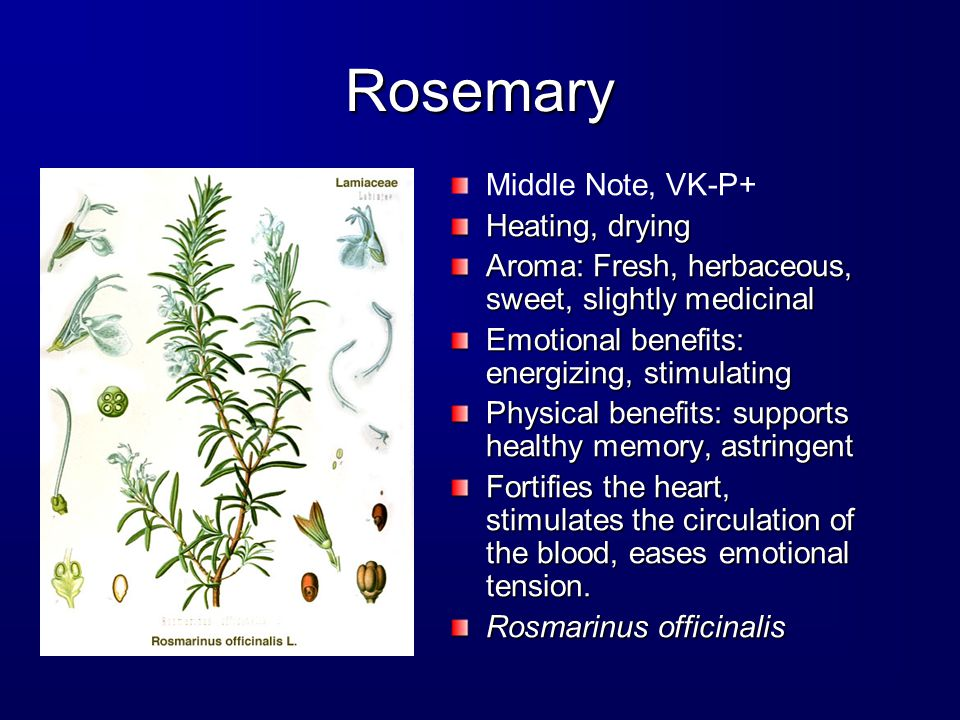 Rosemary Middle Note, VK-P+ Heating, drying Aroma: Fresh, herbaceous, sweet, slightly medicinal Emotional benefits: energizing, stimulating Physical benefits: supports healthy memory, astringent Fortifies the heart, stimulates the circulation of the blood, eases emotional tension.