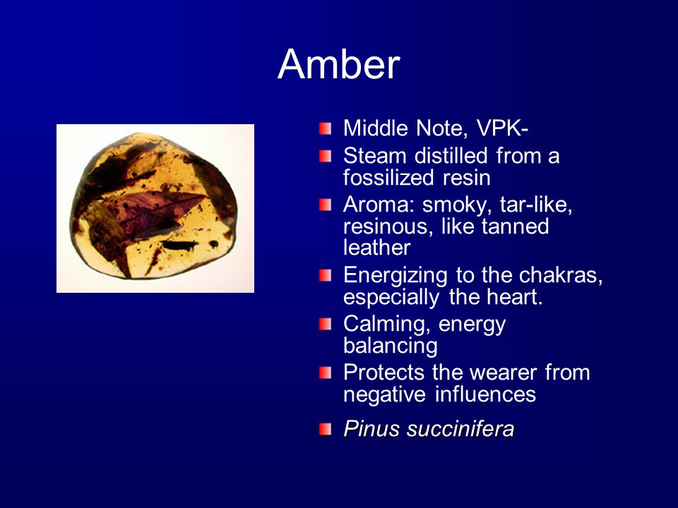 Amber Middle Note, VPK- Steam distilled from a fossilized resin Aroma: smoky, tar-like, resinous, like tanned leather Energizing to the chakras, especially the heart.