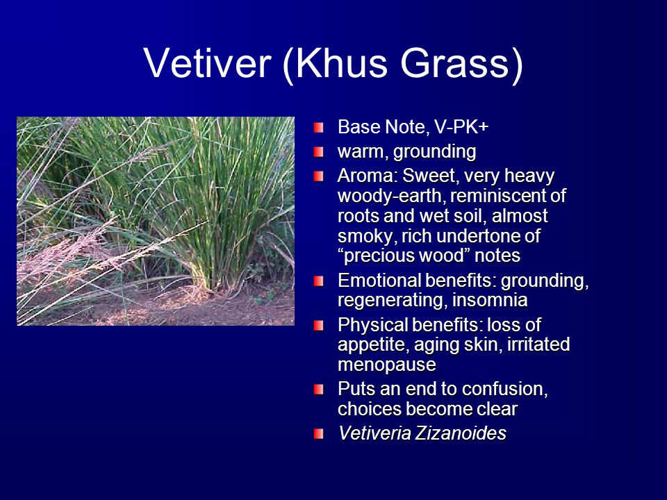 Vetiver (Khus Grass) Base Note, V-PK+ warm, grounding Aroma: Sweet, very heavy woody-earth, reminiscent of roots and wet soil, almost smoky, rich undertone of precious wood notes Emotional benefits: grounding, regenerating, insomnia Physical benefits: loss of appetite, aging skin, irritated menopause Puts an end to confusion, choices become clear Vetiveria Zizanoides