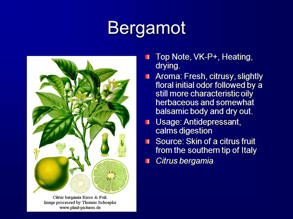 Bergamot Top Note, VK-P+, Heating, drying.