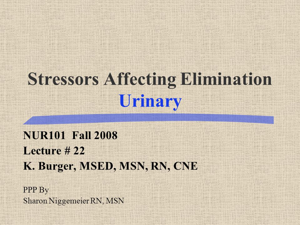 Stressors Affecting Elimination Urinary NUR101 Fall 2008 Lecture # 22 K. Burger, MSED, MSN, RN, CNE PPP By Sharon Niggemeier RN, MSN
