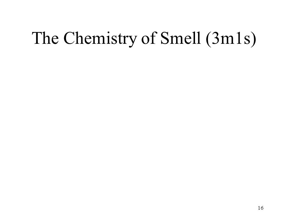 The Chemistry of Smell (3m1s) 16