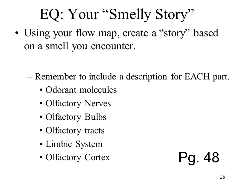 "EQ: Your ""Smelly Story"" Using your flow map, create a ""story"" based on a smell you encounter. –Remember to include a description for EACH part. Odoran"