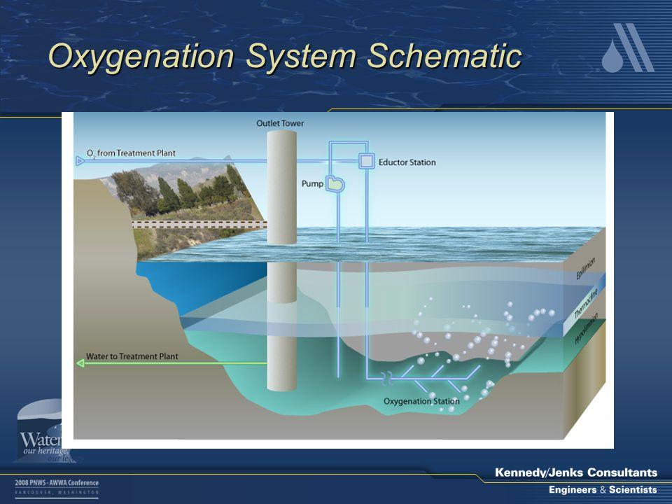 Oxygenation System Schematic