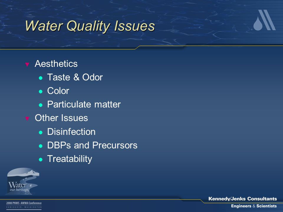 Water Quality Issues ▼ Aesthetics l Taste & Odor l Color l Particulate matter ▼ Other Issues l Disinfection l DBPs and Precursors l Treatability