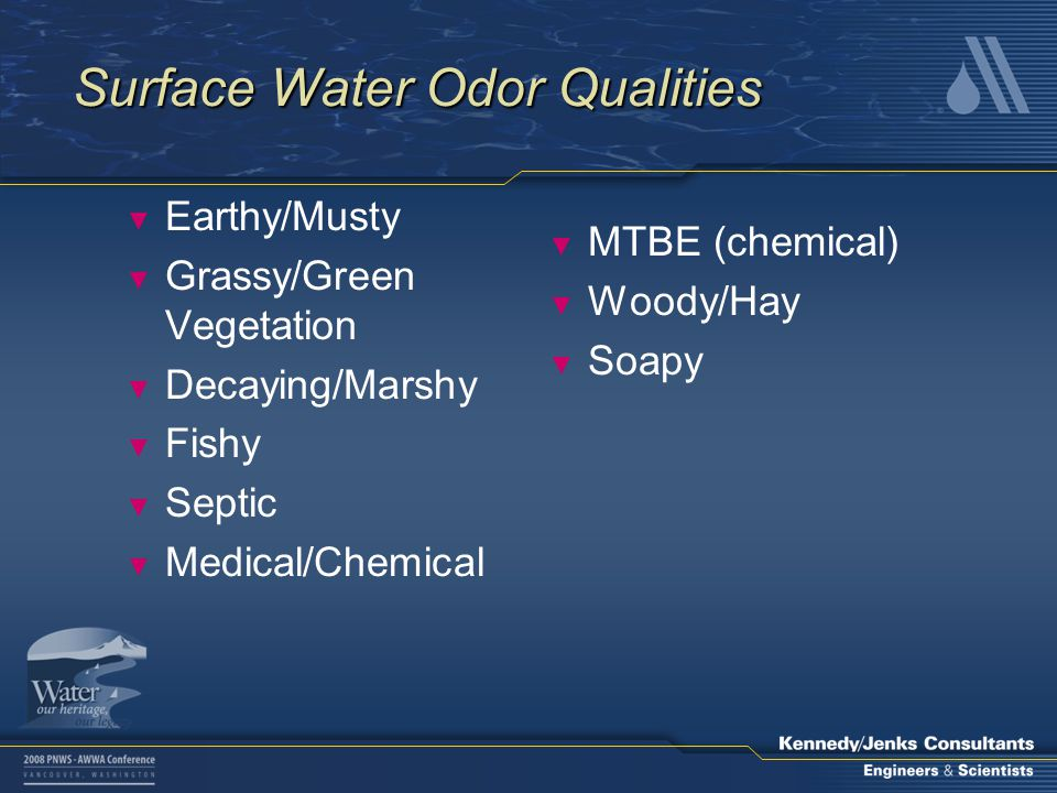 Surface Water Odor Qualities ▼ Earthy/Musty ▼ Grassy/Green Vegetation ▼ Decaying/Marshy ▼ Fishy ▼ Septic ▼ Medical/Chemical ▼ MTBE (chemical) ▼ Woody/Hay ▼ Soapy