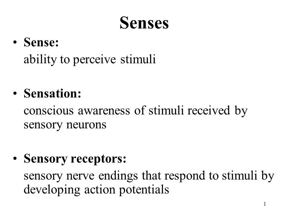 1 Senses Sense: ability to perceive stimuli Sensation: conscious awareness of stimuli received by sensory neurons Sensory receptors: sensory nerve endings that respond to stimuli by developing action potentials