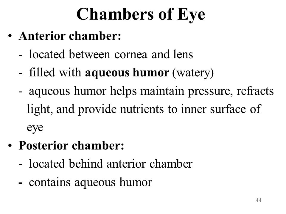 44 Chambers of Eye Anterior chamber: - located between cornea and lens - filled with aqueous humor (watery) - aqueous humor helps maintain pressure, refracts light, and provide nutrients to inner surface of eye Posterior chamber: - located behind anterior chamber - contains aqueous humor