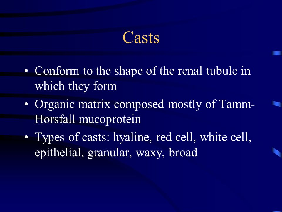 Casts Conform to the shape of the renal tubule in which they form Organic matrix composed mostly of Tamm- Horsfall mucoprotein Types of casts: hyaline, red cell, white cell, epithelial, granular, waxy, broad