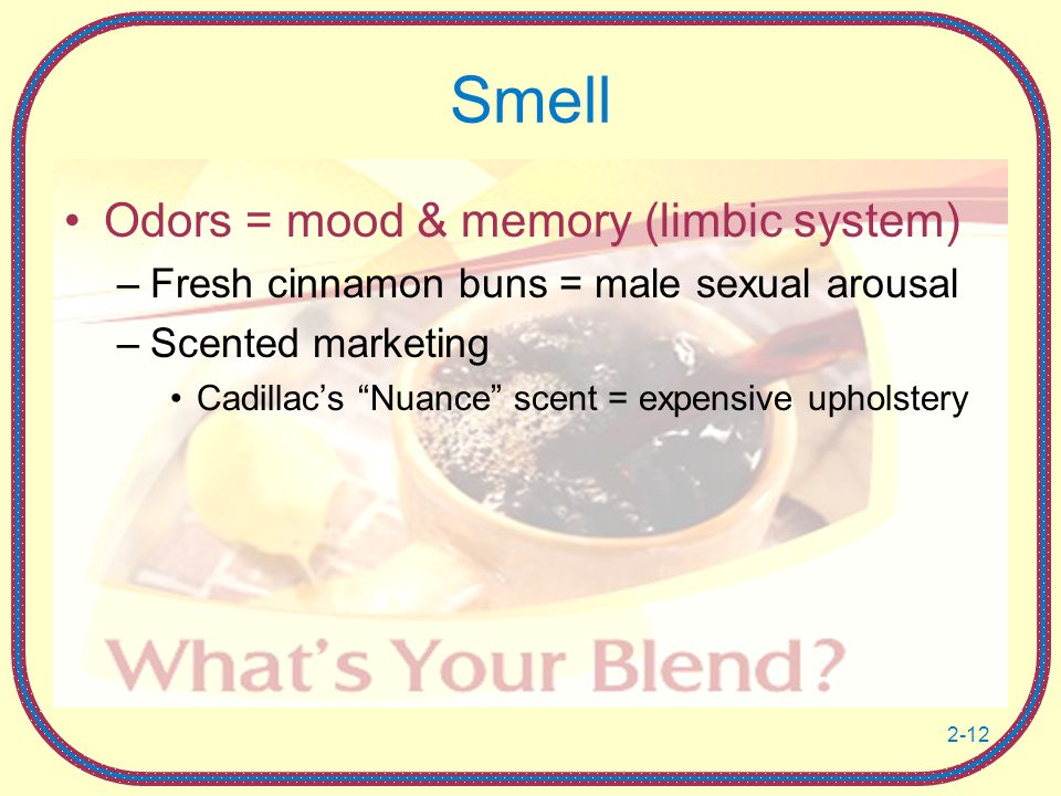 2-12 Smell Odors = mood & memory (limbic system) –Fresh cinnamon buns = male sexual arousal –Scented marketing Cadillac's Nuance scent = expensive upholstery