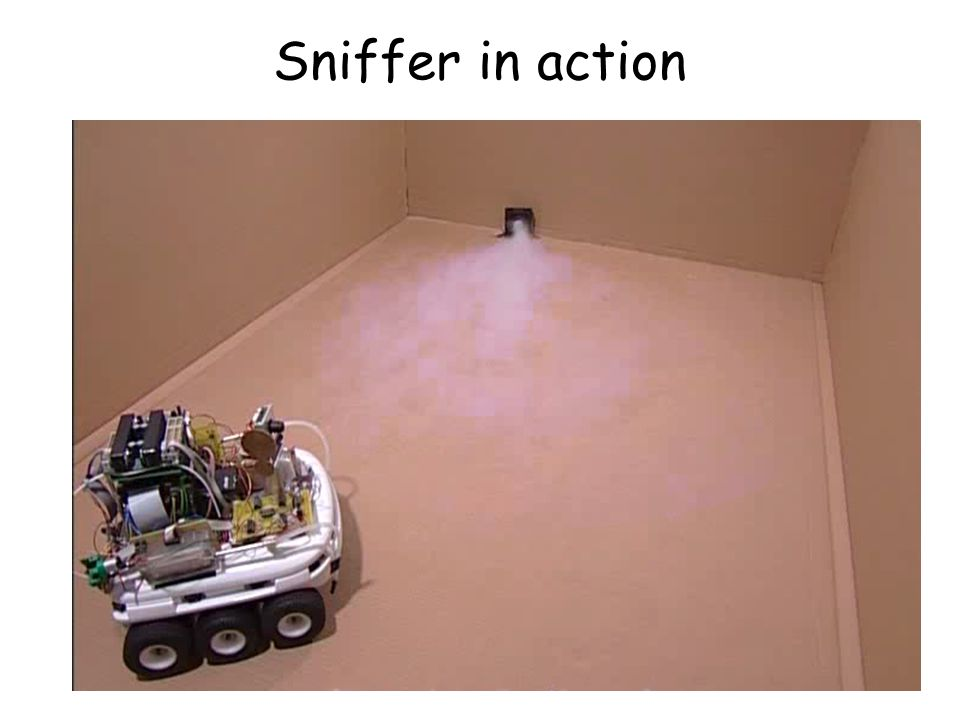Sniffer in action