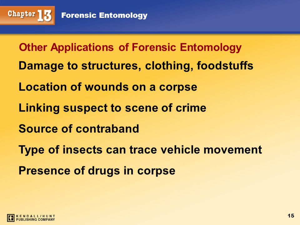 Forensic Entomology 15 Damage to structures, clothing, foodstuffs Location of wounds on a corpse Linking suspect to scene of crime Source of contraband Type of insects can trace vehicle movement Presence of drugs in corpse Other Applications of Forensic Entomology