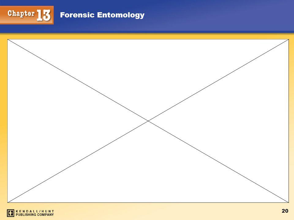 Forensic Entomology 20
