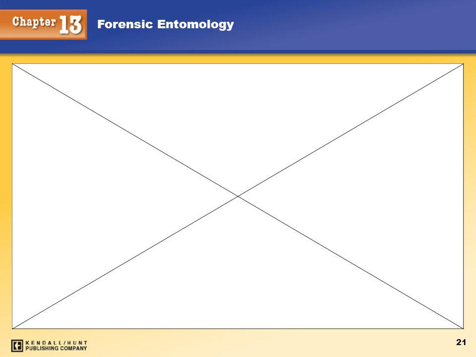 Forensic Entomology 21