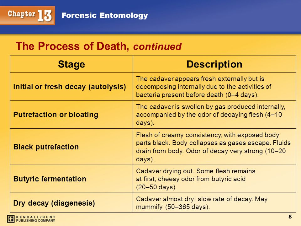 Forensic Entomology 8 The Process of Death, continued StageDescription Initial or fresh decay (autolysis) The cadaver appears fresh externally but is decomposing internally due to the activities of bacteria present before death (0–4 days).