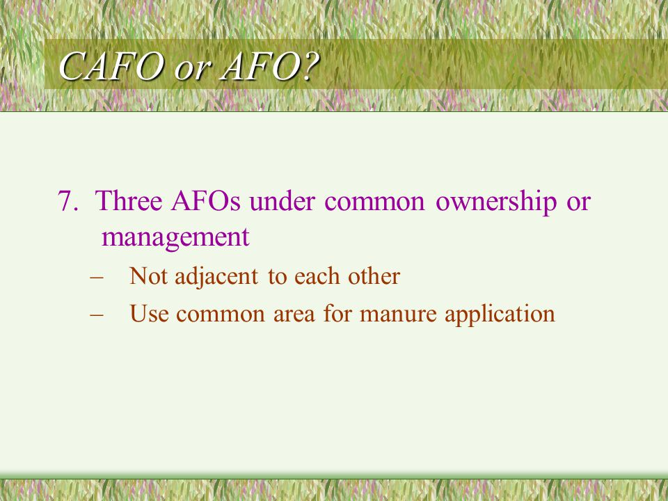 CAFO or AFO? 7. Three AFOs under common ownership or management –Not adjacent to each other –Use common area for manure application